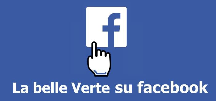 Link FB